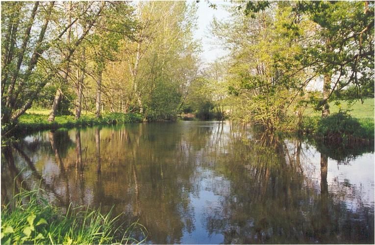 Sentier du Moulin - Chantonnay