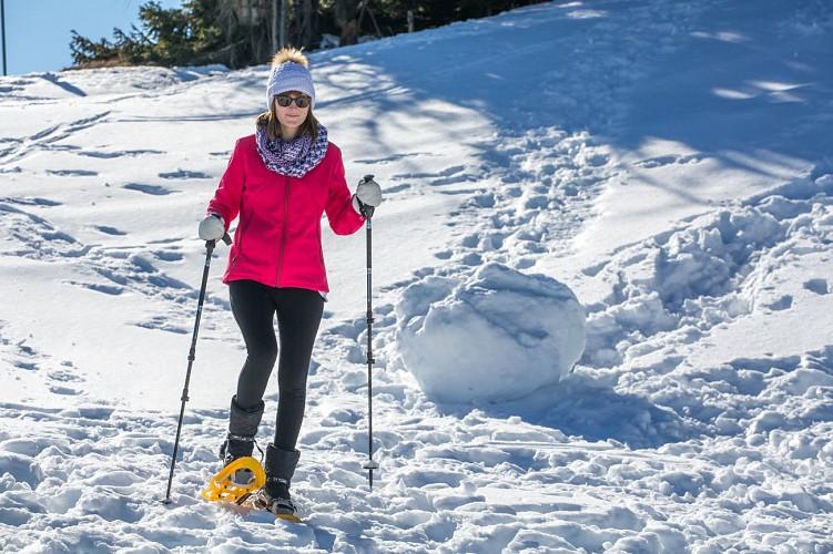 Snowshoes itinerary: l'Alpage de Prapacot