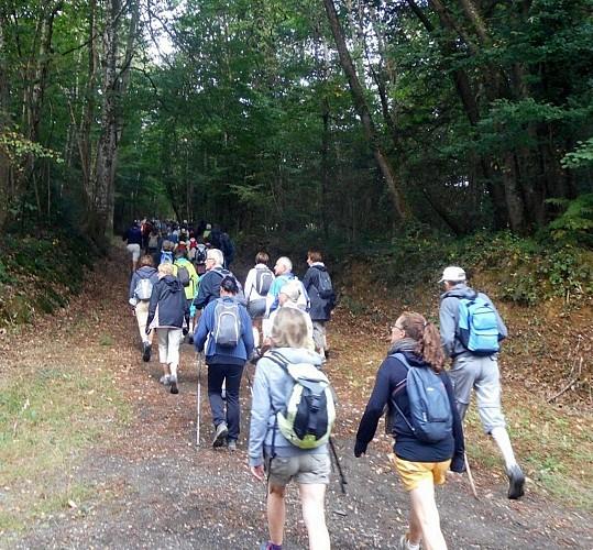 Itinérance pédestre sur le sentier des Maitres Sonneurs entre Berry et Bourbonnais