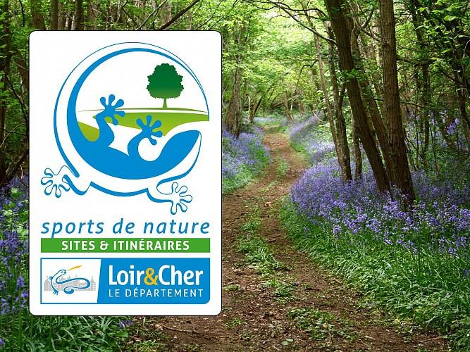 logo-tourisme-de-nature-sites-et-itineraires-chemin-forestier