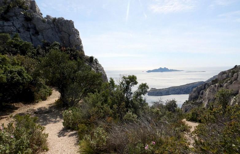 Cap Morgiou & Ile Riou vus du Col des Charbonniers
