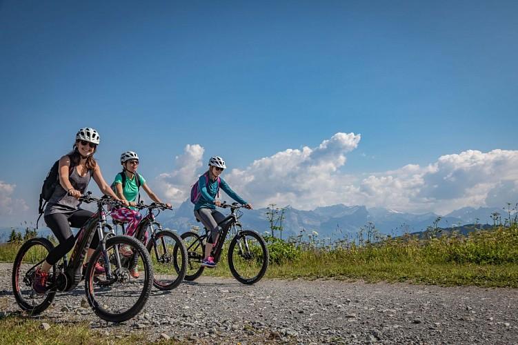 Mountain bike trail n°44 - Mont d'Arbois