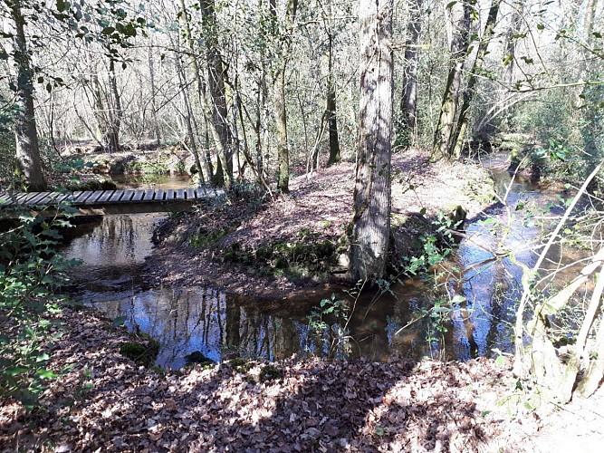 Passerelle sur le ruisseau La Caleuvre