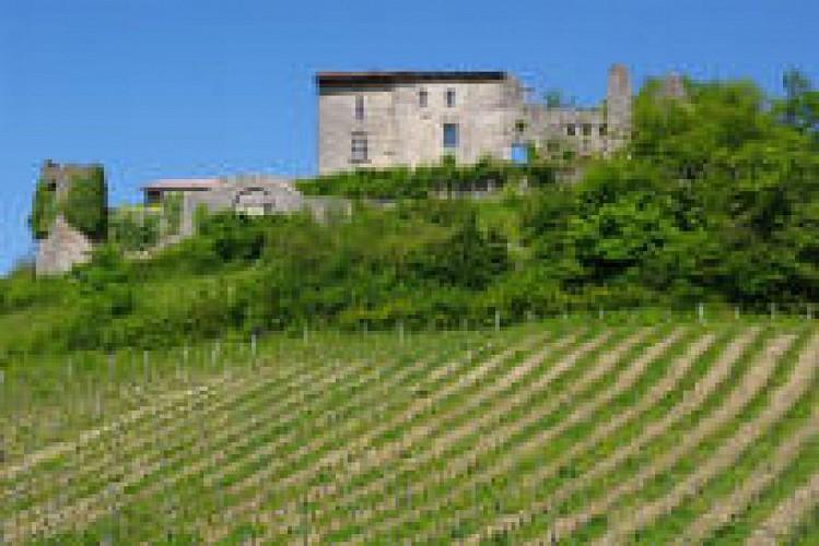 Châtelard à Lhuire
