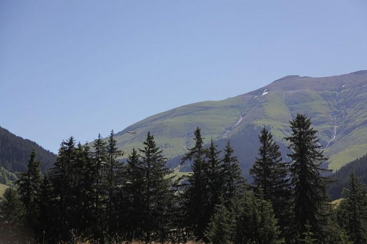 Mountain bike trail n°53 - Javen