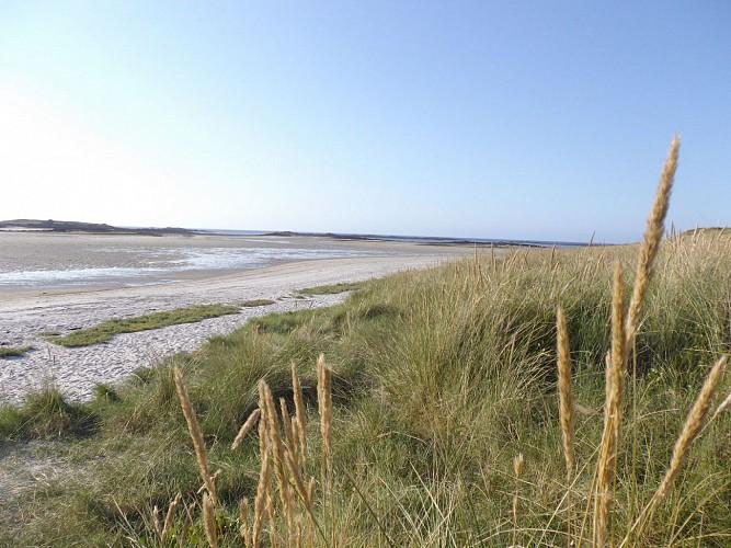 Dunes de Sainte Marguerite