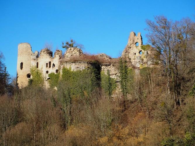 Château du Morimont
