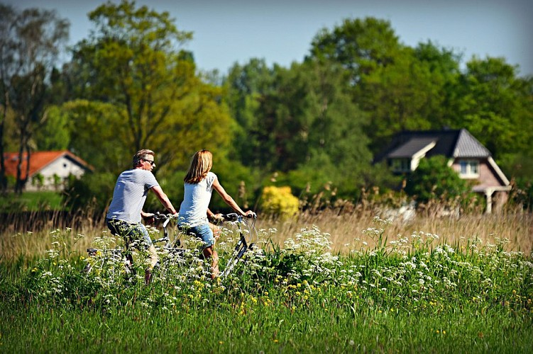 Villers-la-Ville : de ferme en ferme
