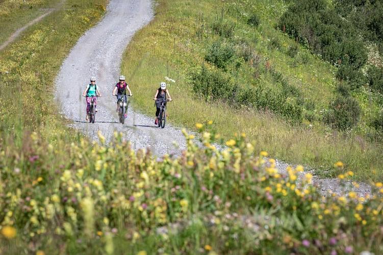 Mountain bike trail n°54 - Les Montagnes d'Arbois