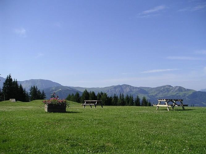 Mountain bike trail n°56 - Les Belvédères de Megève