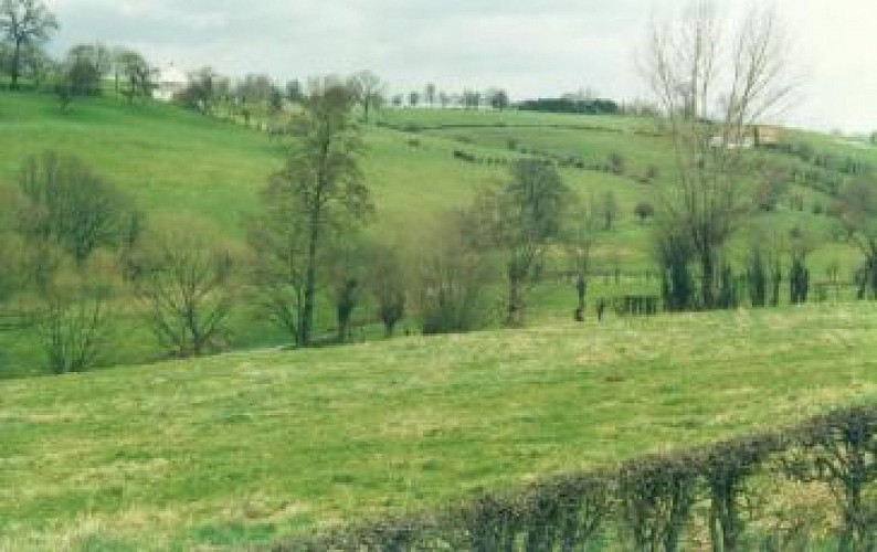 Gemmenich : Promenade du Bois de Preuss