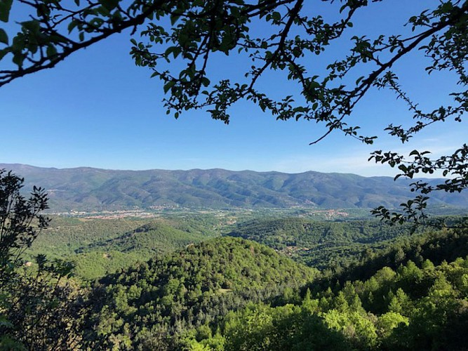 Vue sur la plaine du Roussillon