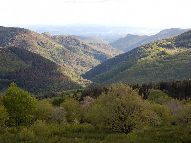Vallée de Cabrespine