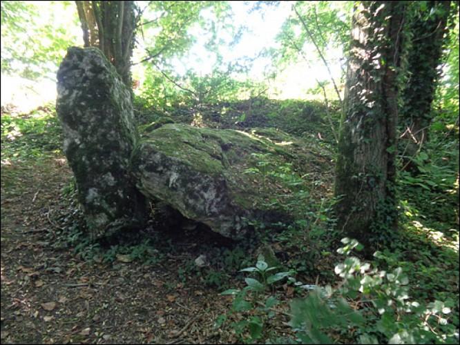 MONTMIRAIL - Dolmen du Trou du Boeuf