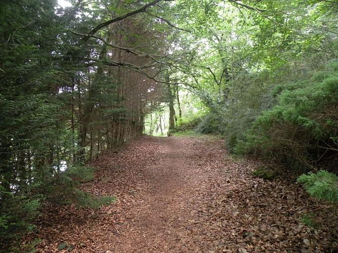 Pays des Abers - Rand'Abers 10 : Coat-Méal - Tréglonou - Plouvien - Bourg-Blanc