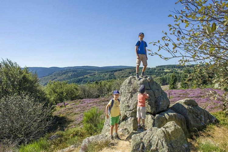 A la découverte de la tourbière du plateau de La Verrerie