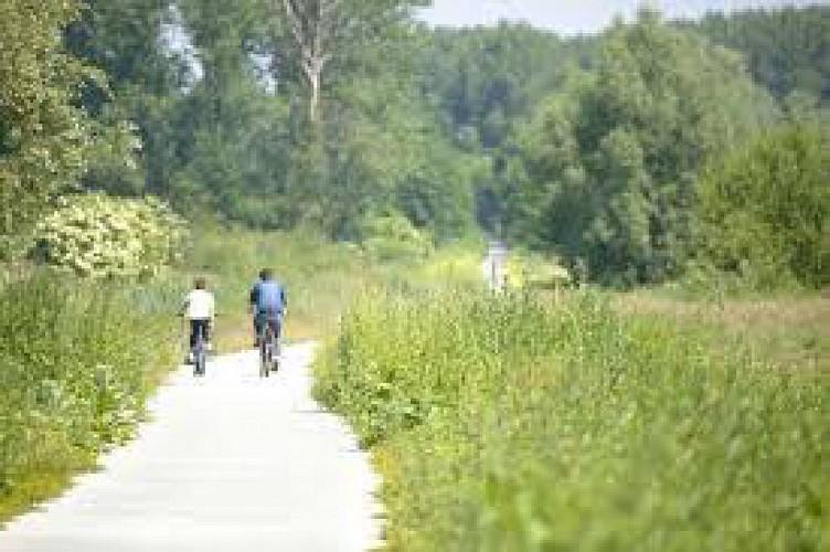 De landschapsweg met de fiets