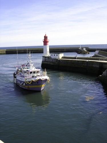 Le Guilvinec côté port - Port, Haliotka, pointe de Men Meur, parc de Moulin Mer, abri du marin