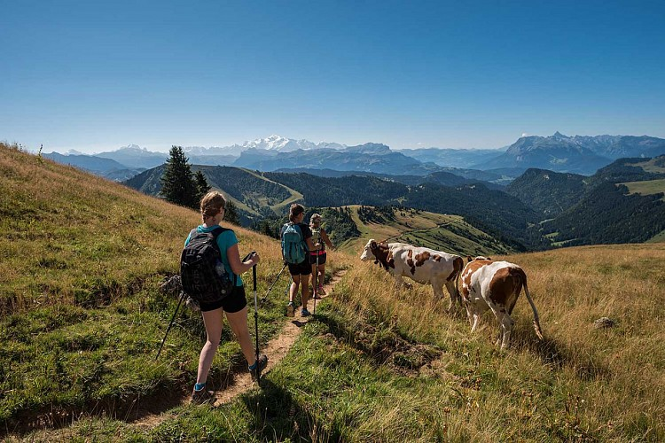Roc d'Enfer explorer trail