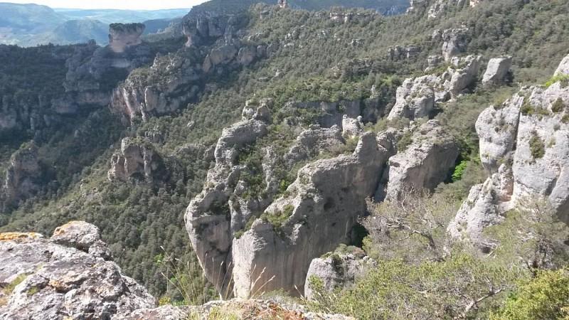 Le Rozier  entre Tarn et Jonte