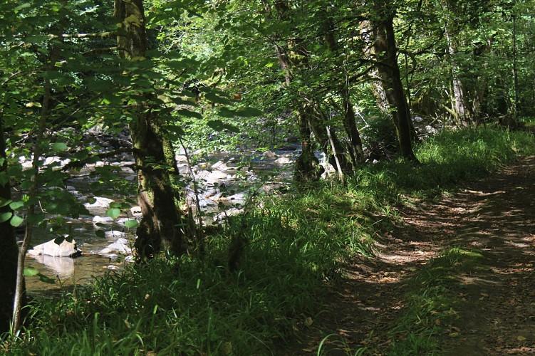 PR Le château de Branzac - 7 kms