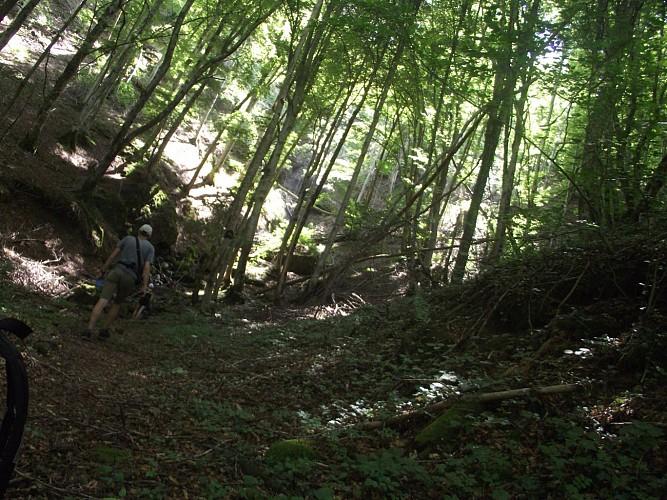 PR En Val d'Aspre - 10 kms