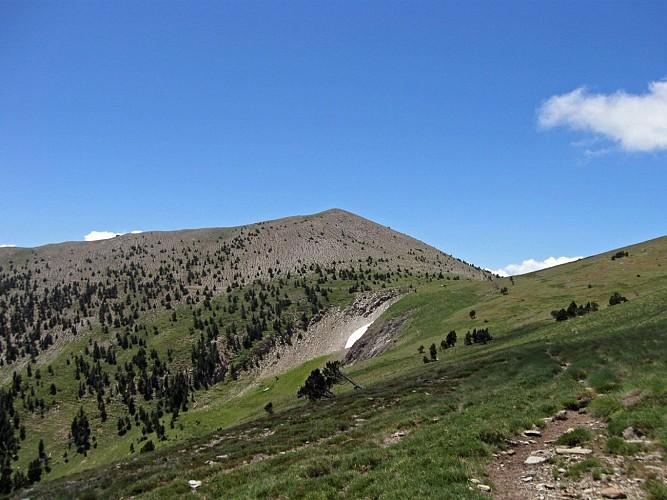 Le pic de la Pelade (2370 M)