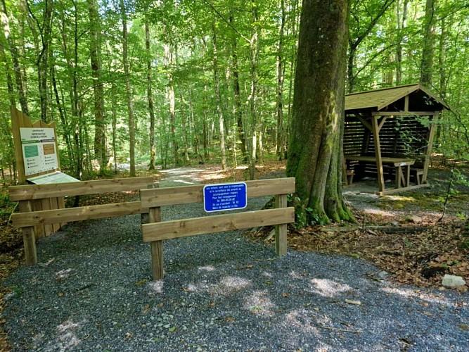 Le sentier du Bois de la Fontaine