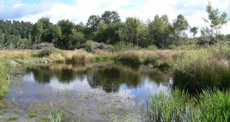 La réserve naturelle d'Orti