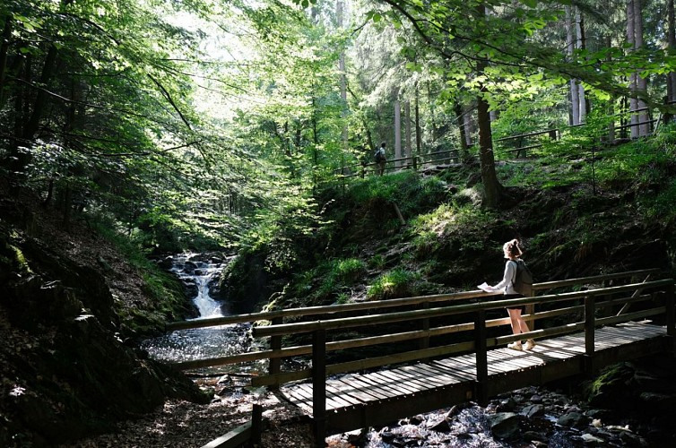 Sart-lez-Spa: L'écume au pied des Fagnes - Balade de la Hoëgne