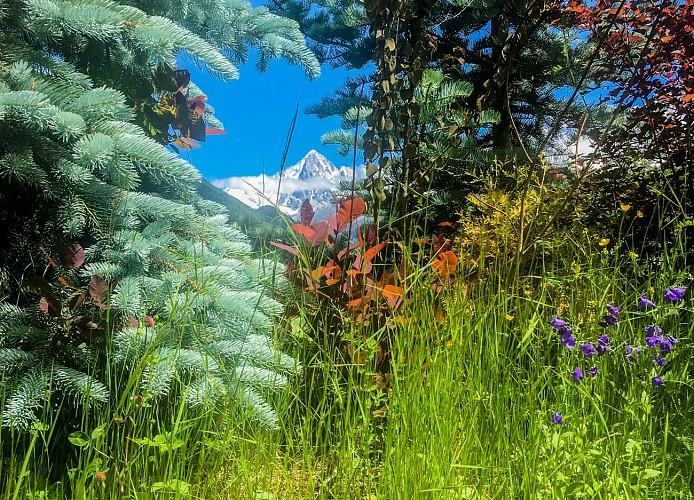 Trail Chavants to Col de la Forclaz via Charousse