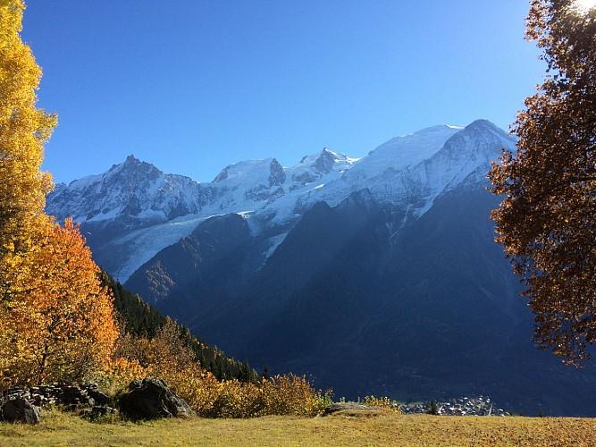 vue massif du mont-blanc depuis plan la cry