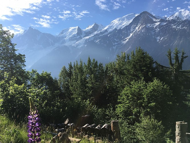 Merlet - Aiguillette des Houches via Alpages of Chailloux trail