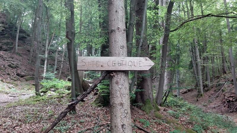 Gures trails