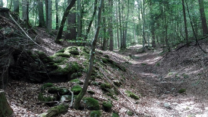 Sentier des Gures