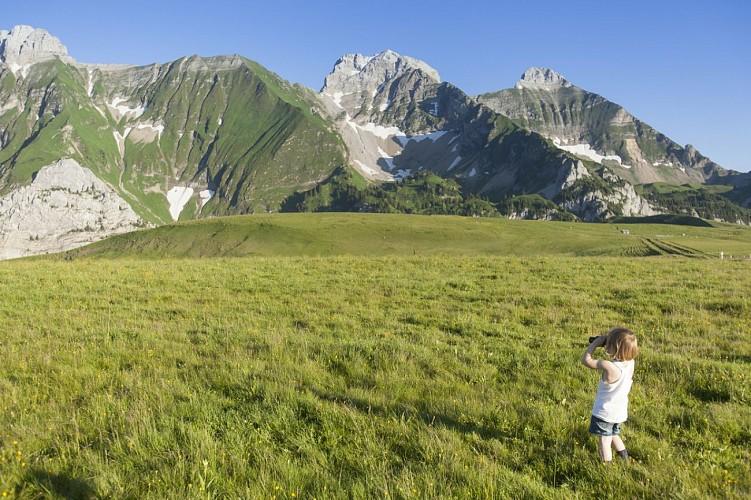 Plateau de Cenise Mont-Saxonnex
