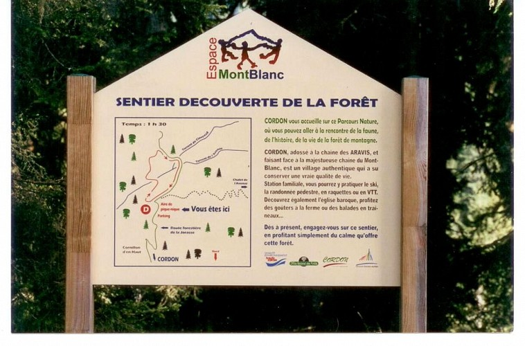"""""""Forest discovery"""" trail"""
