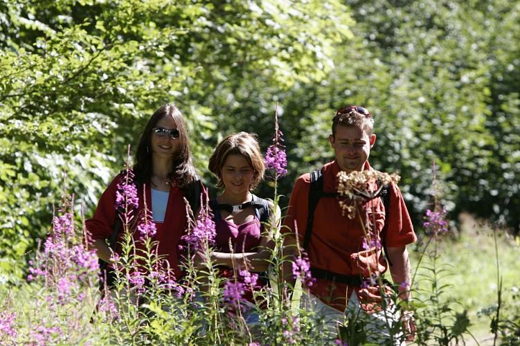"""""""La Chemin des Ecoliers"""" Hike"""