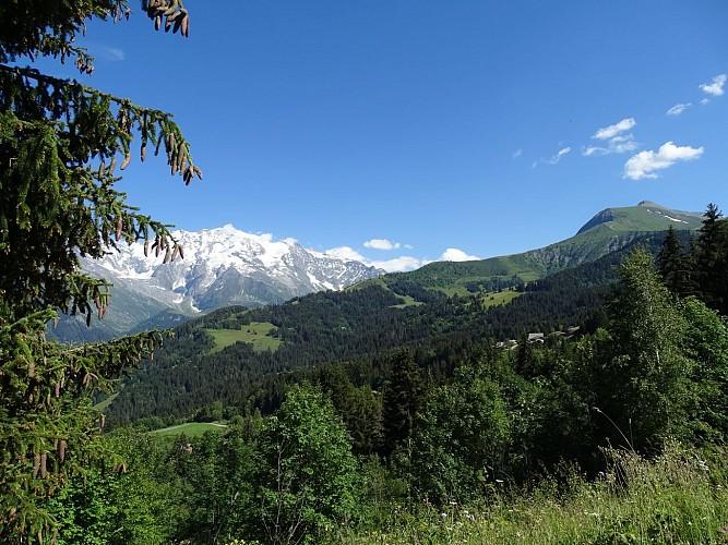Montée du Mont Joly