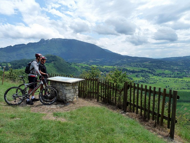 Mountain biking circuit du vignoble