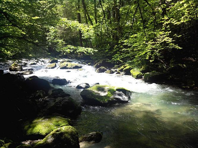 """Les Berges du Brevon"" Hike"