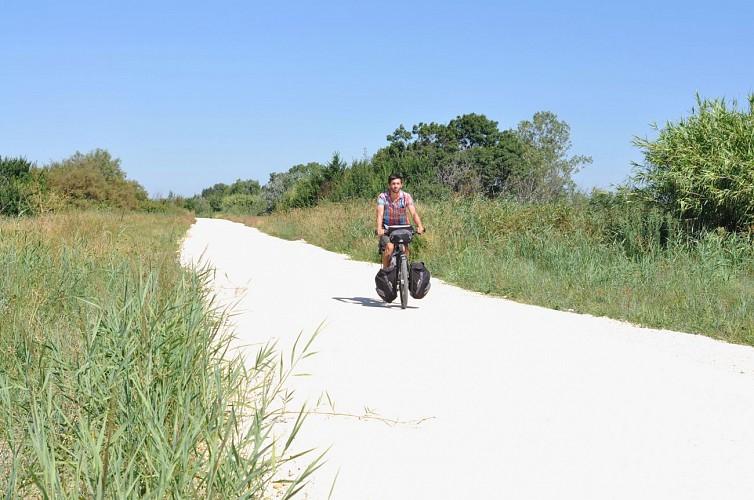 Piste cyclable vers le Marais du Vigueirat et le Mas Thibert