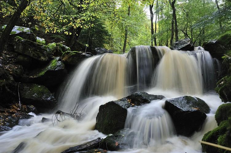 Sedoz, le ruisseau enchanté (Ninglinspo)