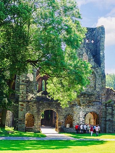 Wandeling van 5 tot 10 km in Villers-La-Ville - De grootsheid van een abdij en een woud