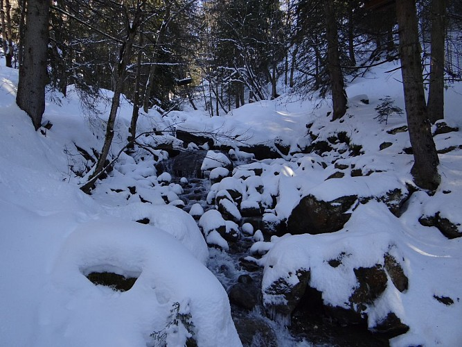Circuit d'hiver Le Sentier des Paquiers