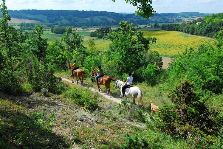 Boucle équestre du Sud Quercy
