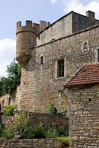 Milhars Chateau