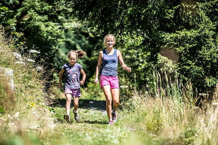 THE BILBERRY TRAIL