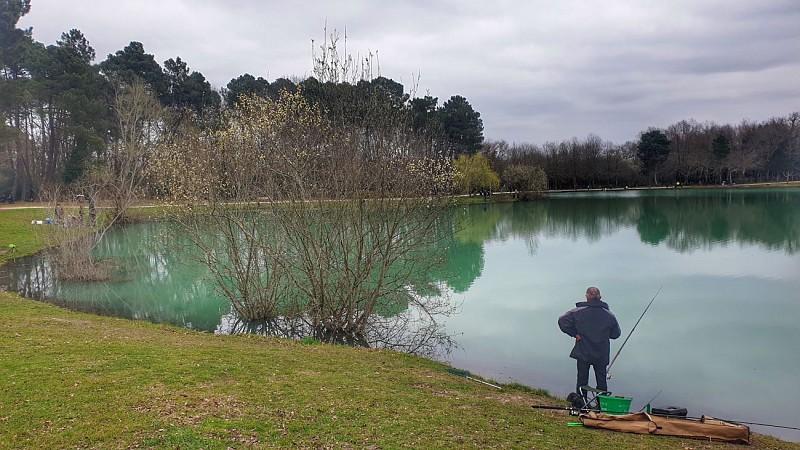 Balade à roulettes : Le lac vert