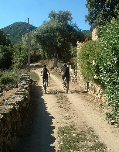 Randonnée Ruppione - Sant'Amanza